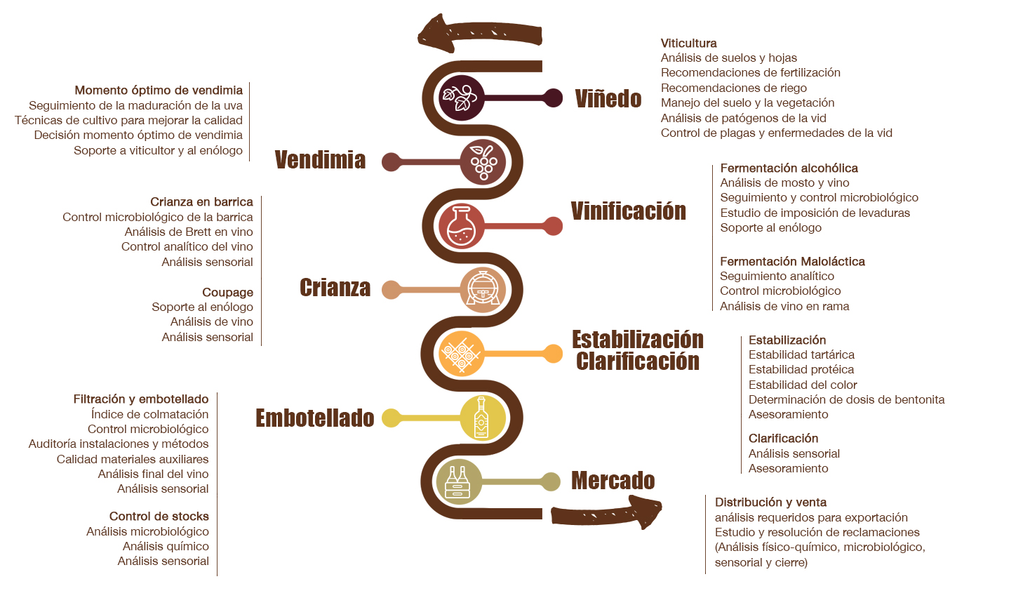 vitec-infografia-servicios-esp